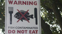Warning - Contaminated fish
