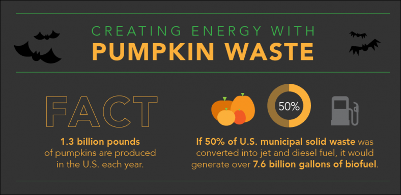 pumpkinWaste_2015-update