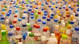 Plastic Bottles, Not Bags, Cause the Worst Pollution to Europe's Waterways photo credit Tom Page